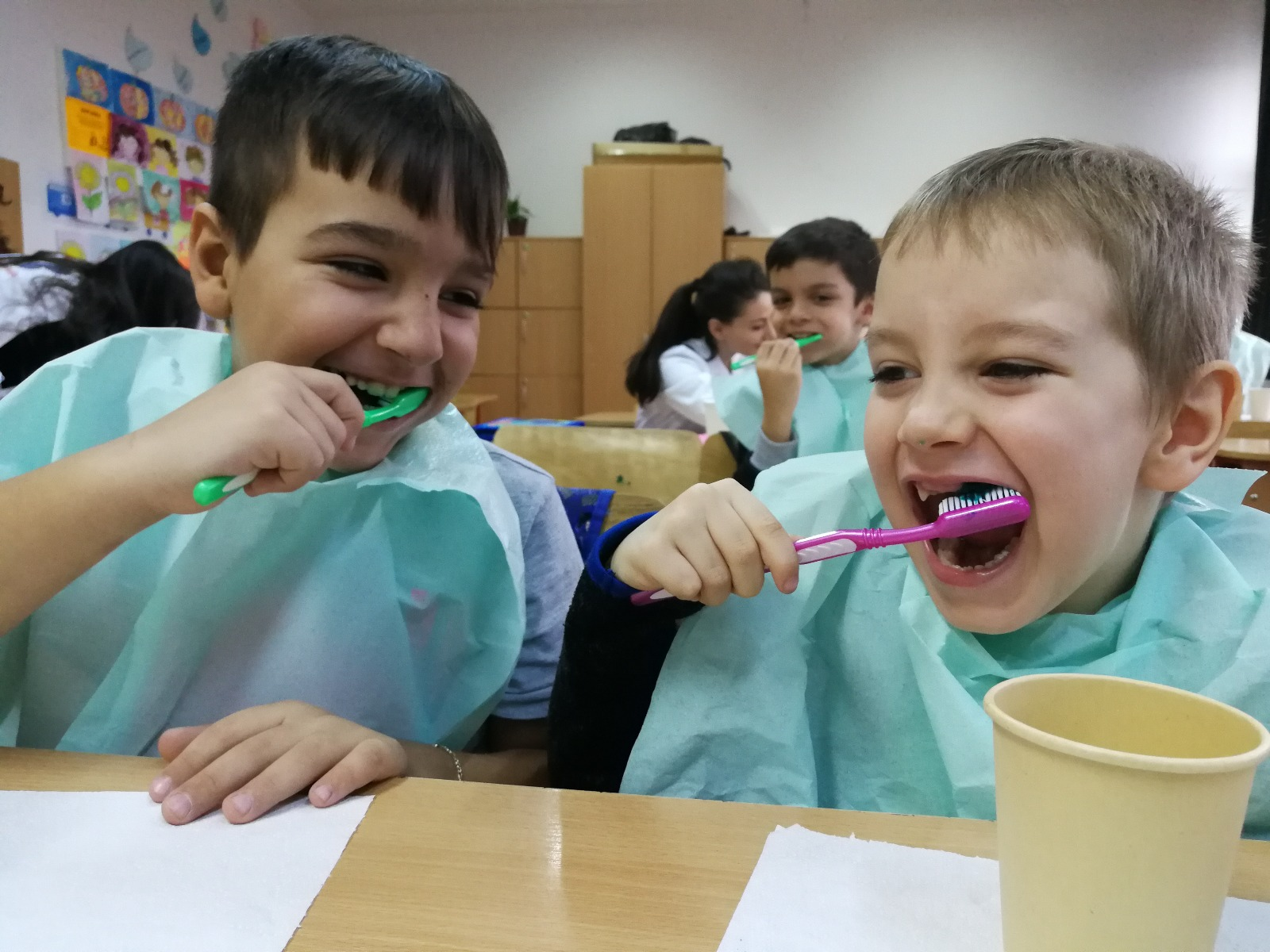 ZM (in-school dental brushing programme) (11)